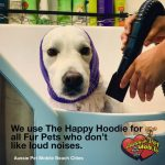 We Use The Happy Hoodie For All Fur Pets Who Don't Like Loud Noises.